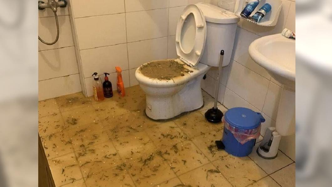 網友PO出馬桶爆炸現場照,排泄物與廚餘噴滿地。(圖/翻攝自爆怨公社) 超噁!房客亂倒廚餘「馬桶爆炸」深色液體噴滿地