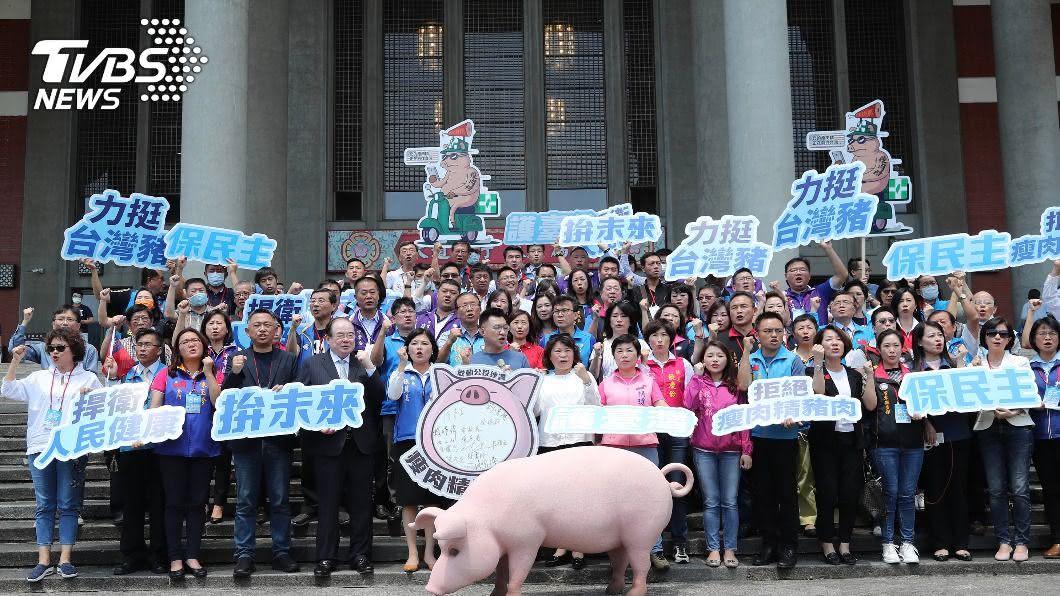 國民黨啟動反美豬公投。(圖/中央社) 國民黨推公投 黃偉哲:不知反美豬還是反美