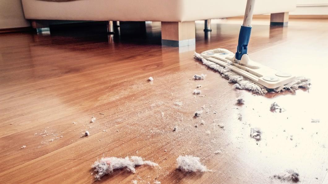 女子常在床板下掃出灰塵、沙子,沒想到是遭白蟻入侵。(示意圖/shutterstock達志影像) 床板噴灰塵…網勸「要塌了快跑」:內藏密麻肥蟲啃咬