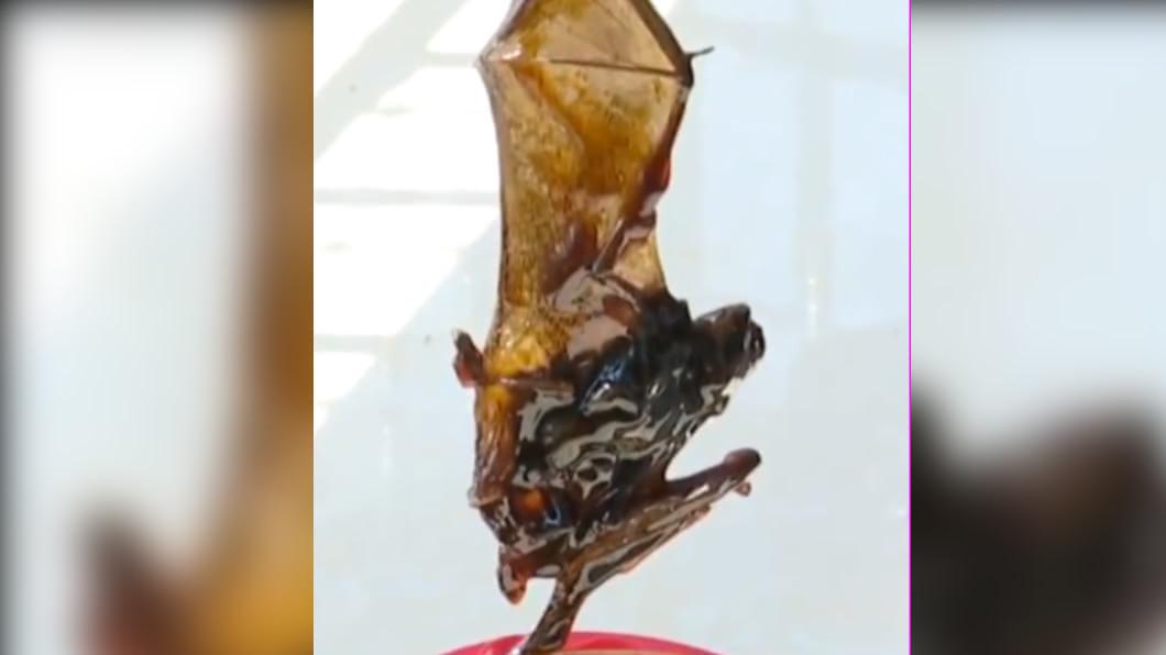 (圖/翻攝自《梨視頻》微博) 蠔油出現蝙蝠屍!他崩潰索賠 廠商:可以補送2桶