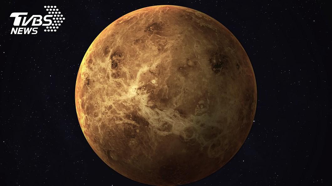 金星示意圖/shutterstock達志影像 金星發現「外星生命」跡象 NASA:迄今最重要發展
