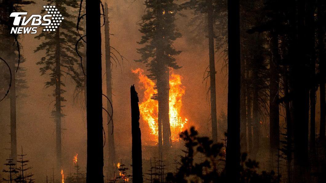 毒煙如一天抽400根菸! 加州野火濃煙飄到東岸