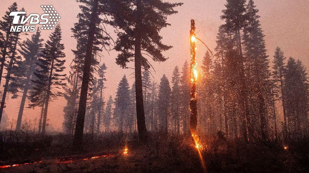 美國西岸野火產生的濃煙已飄洋至歐洲北部。(圖/達志影像美聯社) 美西野火濃煙鋪天蓋地 飄洋過海抵歐洲北部