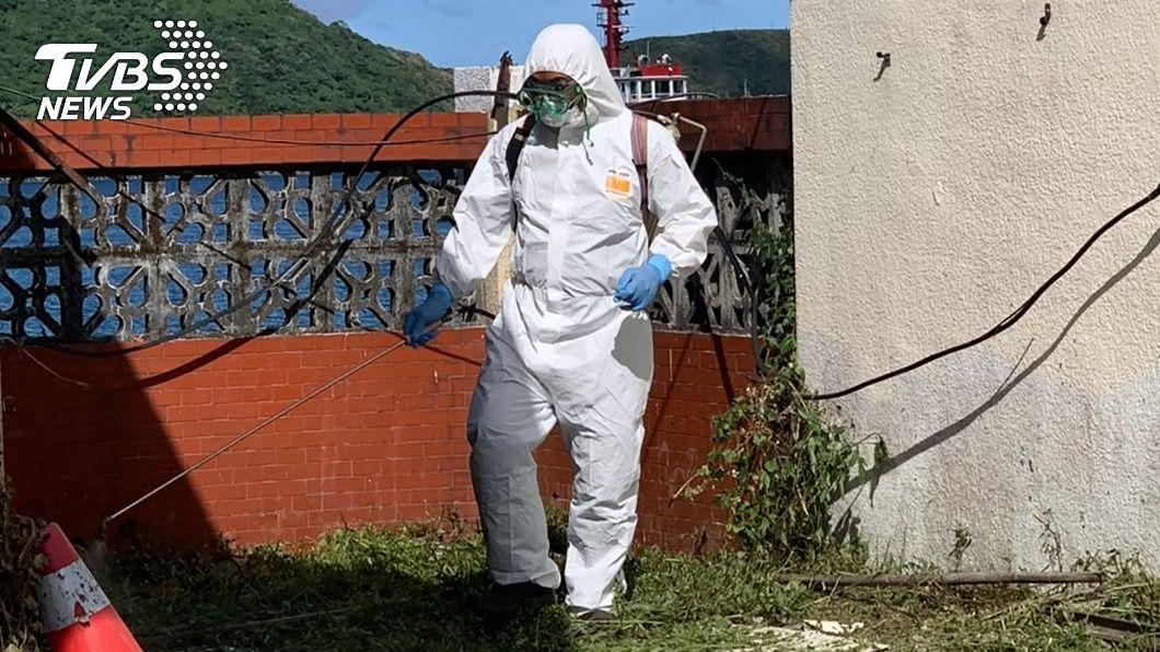 (圖/中央社) 蘇澳港老鼠驗出漢他病毒 商船須落實鼠盾防疫