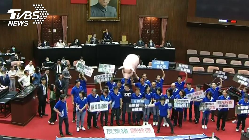 (圖/TVBS) 藍黨團抬「巨毒豬」進場!人牆阻議:蔡英文、蘇貞昌道歉