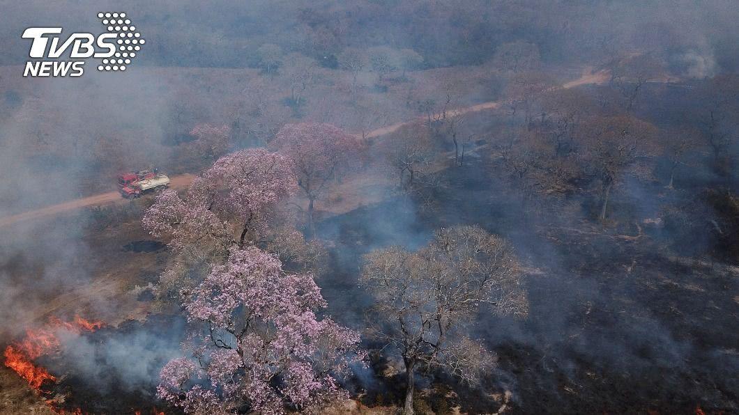專家預計10月底來臨的雨季才能控制巴西大沼澤森林的火勢。(圖/達志影像路透社) 巴西大沼澤森林火災失控 專家估長期大雨才能緩解