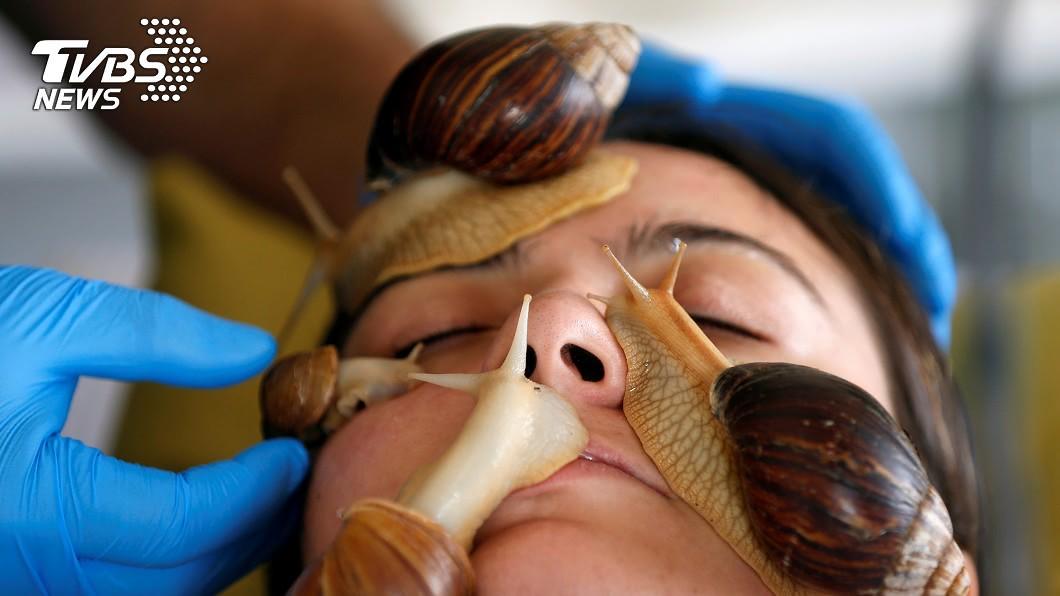 約旦美容院推出蝸牛美容,標榜能為肌膚補充膠原蛋白。(圖/達志影像路透社) 標榜補充膠原蛋白!美容院任「蝸牛爬滿臉」 網怕爆