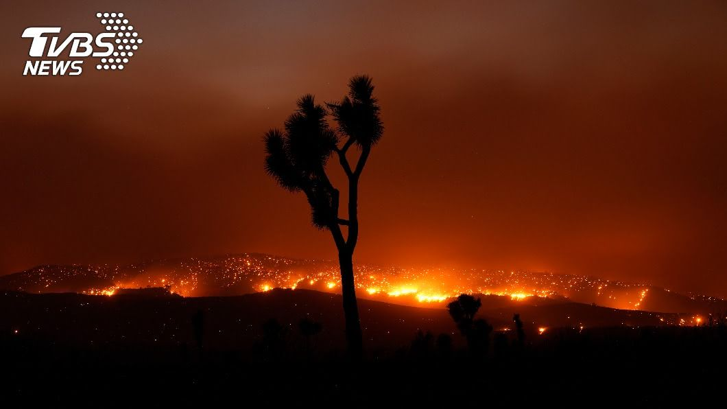 美國西岸野火肆虐。(圖/達志影像美聯社) 野火、颶風愈趨頻繁 庫克:證明氣候變遷確實存在