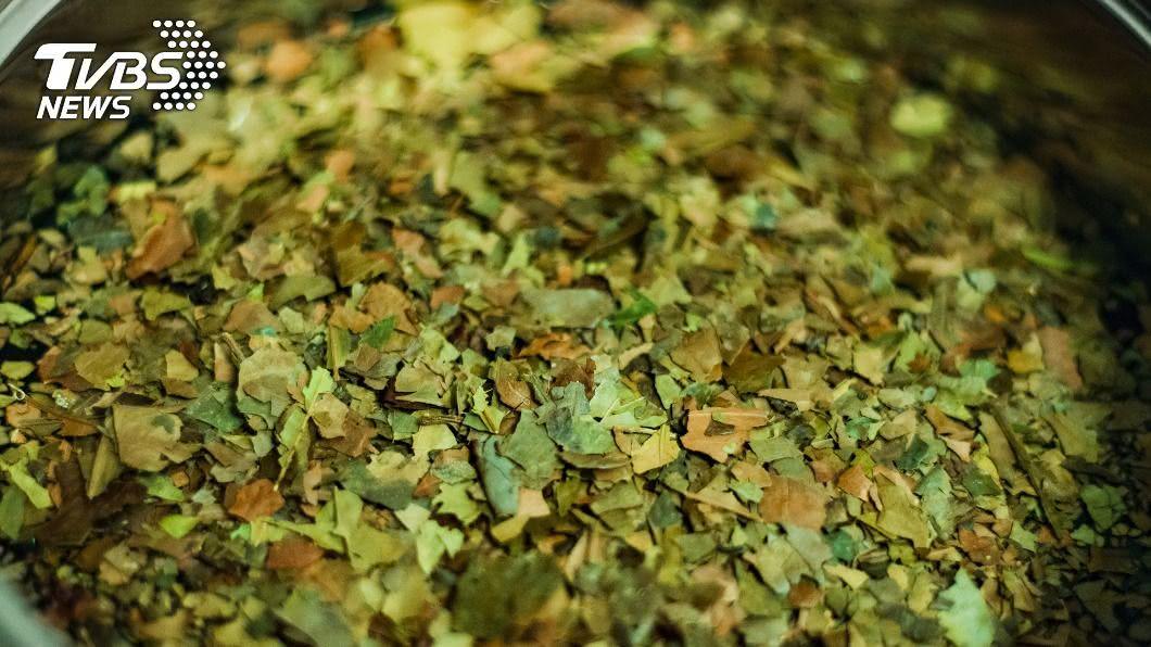 (示意圖/shutterstock 達志影像) 南美冬青葉茶可望登台 食藥署要求警語3族群少碰