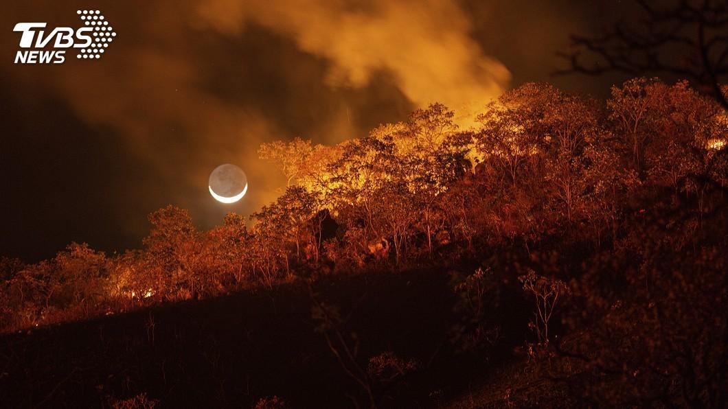巴西大沼澤火災已經持續100多天。(圖/達志影像美聯社) 森林火災持續百日 巴西大沼澤恢復生態至少要5年
