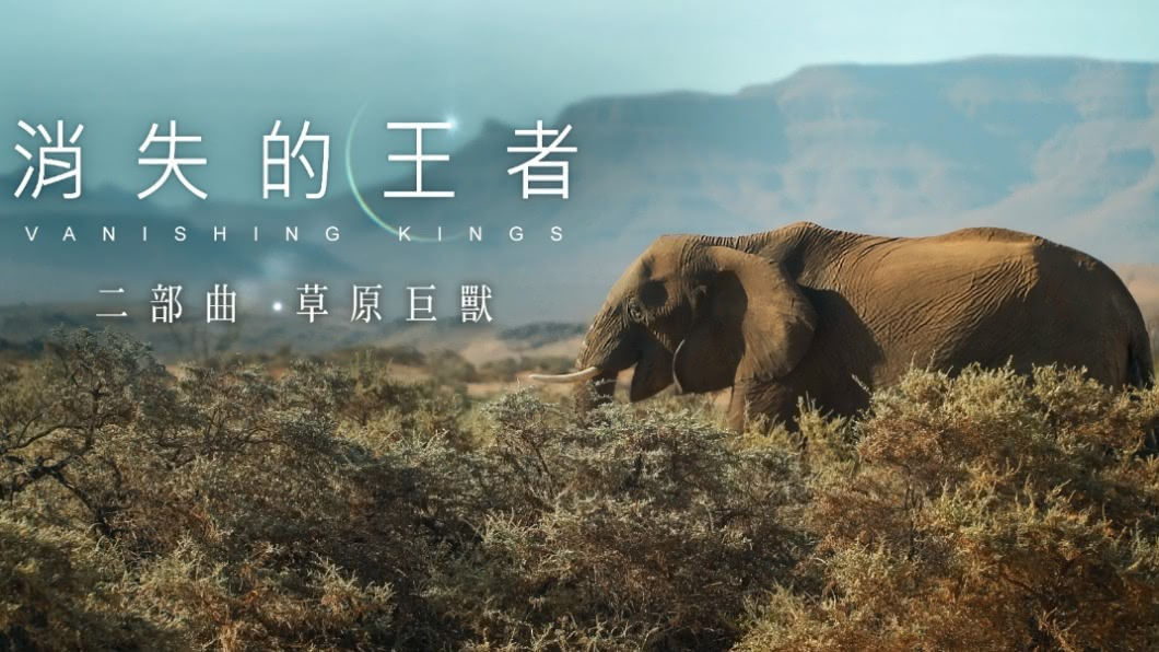 2020第四屆全球華文永續報導獎,專業組長影片類優等,由東森電視台「消失的王者-草原巨獸」 消失的王者-草原巨獸