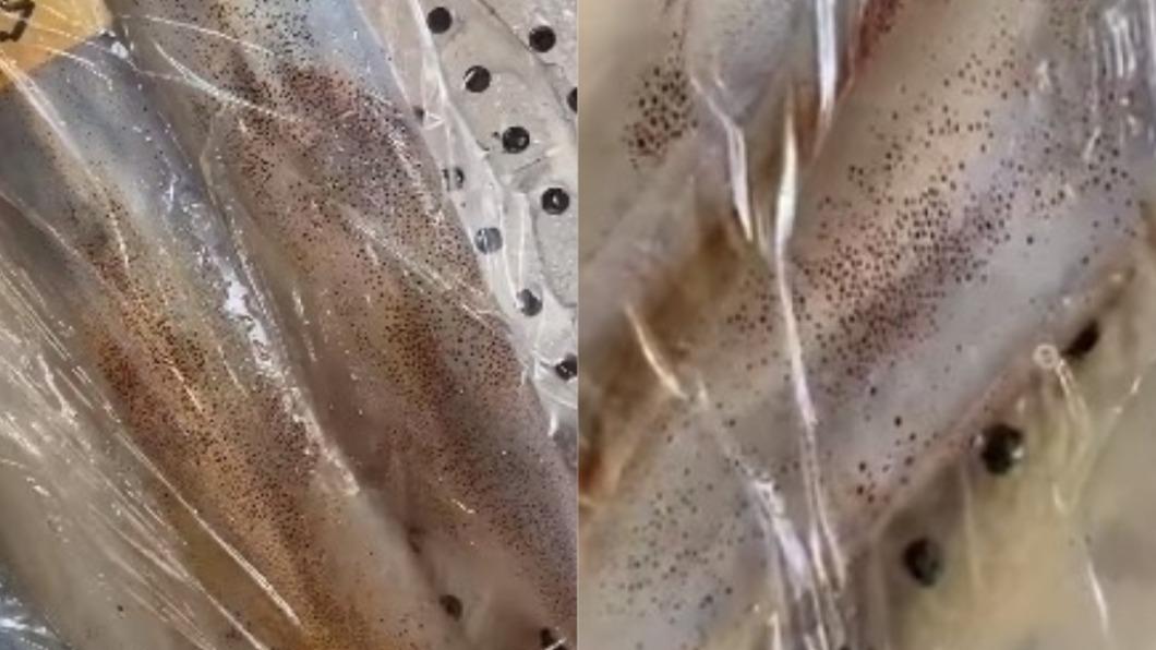 網友發現澎湖小管上有閃爍紅點。(圖/翻攝自爆系知識家) 澎湖小管遭「閃爍紅點」寄生? 內行驚呼:超新鮮快買
