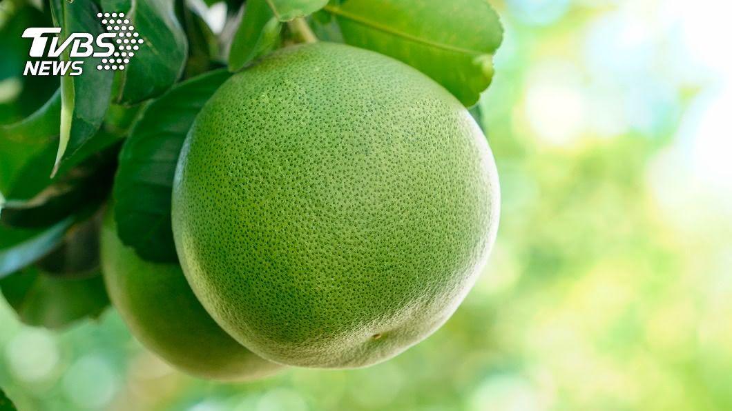 柚子和文旦其實不一樣。(示意圖/shutterstock達志影像) 柚子、文旦傻傻分不清? 內行曝真相網驚呆:原來不一樣