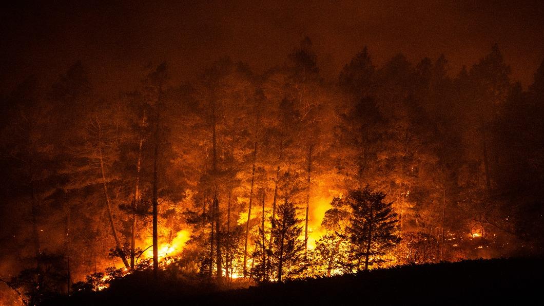 圖/達志影像美聯社 加州野火擴大酒鄉難保 川普甩鍋森林管理不當