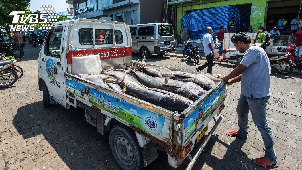 一名貨車司機載到整車冷凍鮪魚檢驗皆陽性。(示意圖/Shutterstock達志影像) 半路通知「整車魚都陽性」 司機嚇躲車內隔離