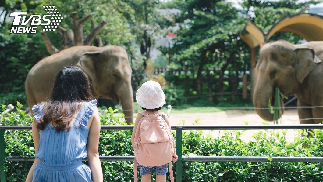近來適逢大陸十一連假,許多民眾紛紛出門遊玩。(示意圖/Shutterstock達志影像) 爸點動物園官網見「女優嫵媚對視」 投訴園方稱:沒問題
