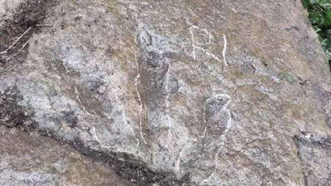 5歲童山上發現恐龍腳印。(圖/翻攝自微博) 5歲童上山突喊「有恐龍腳印!」 專家驚:屬白堊紀早期