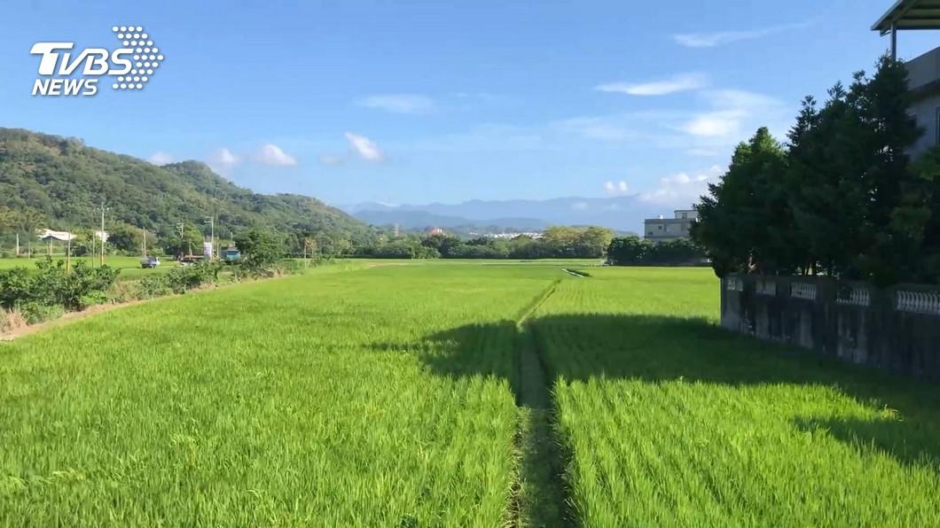 (圖/TVBS) 桃竹苗停灌補償30日截止 農水署籲把握時間申辦