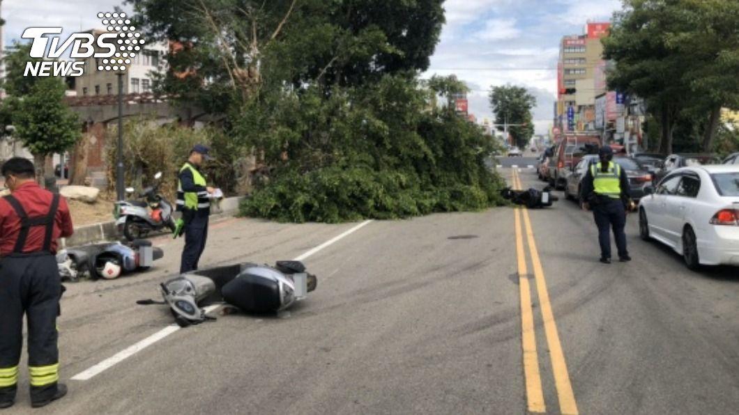 苗栗頭份路樹突然倒塌斷裂,造成至少5名騎士遭壓傷。(圖/中央社) 疑風太大!頭份路樹倒塌 5騎士遭壓傷