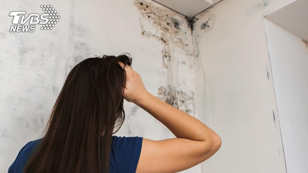 日常生活有許多小物能幫助除濕防霉。(示意圖/shutterstock 達志影像) 雨下到發霉! 5種「DIY除濕小物」對抗黴菌超輕鬆