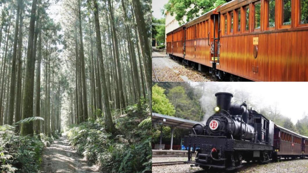 阿里山小火車之旅再掀熱潮。(圖/林務局、阿里山林業鐵路及文化資產管理處提供) 阿里山「森呼吸」之旅 檜木列車首登場俯瞰嘉南平原