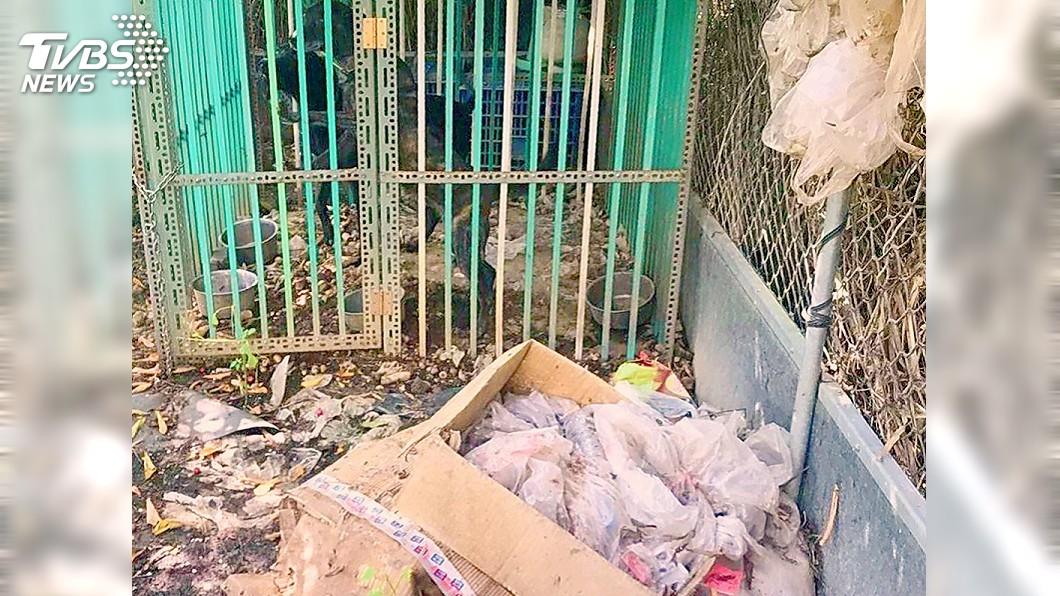 (圖/中央社) 養狗環境宛如垃圾堆 6次複查未改善飼主遭罰3千元