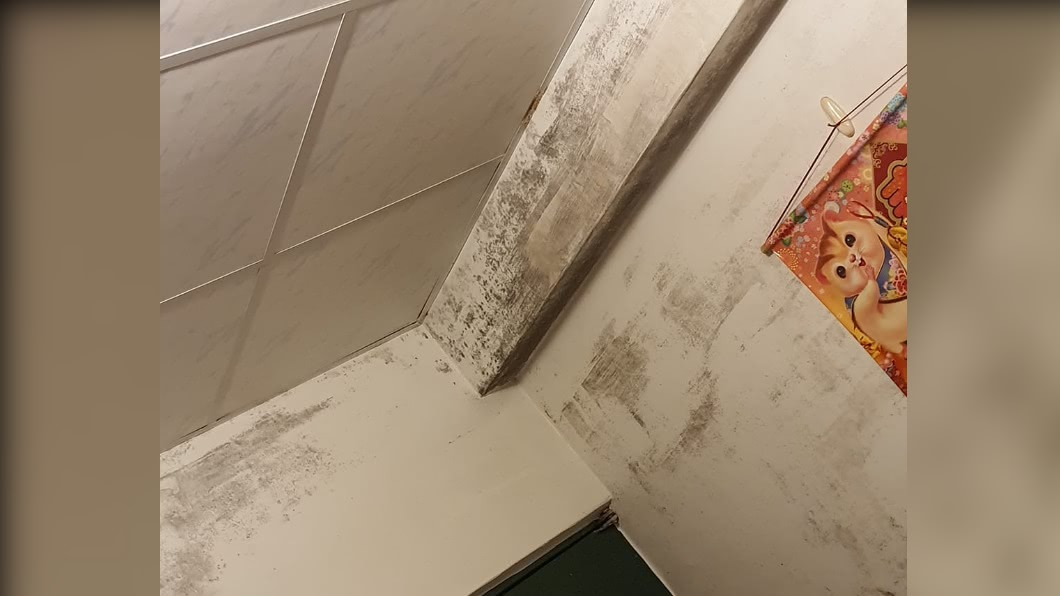 民眾退租房間時因牆壁發霉遭房東扣取押金,引起糾紛。(圖/翻攝自爆料1公社) 「牆發霉」退租遭扣1萬4千 女房客稱多次反映仍遭求償