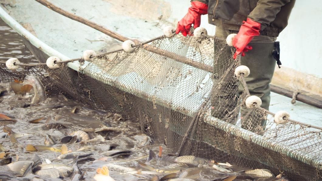 示意圖/達志影像 日本「大和堆」水域 上千艘大陸漁船非法入侵