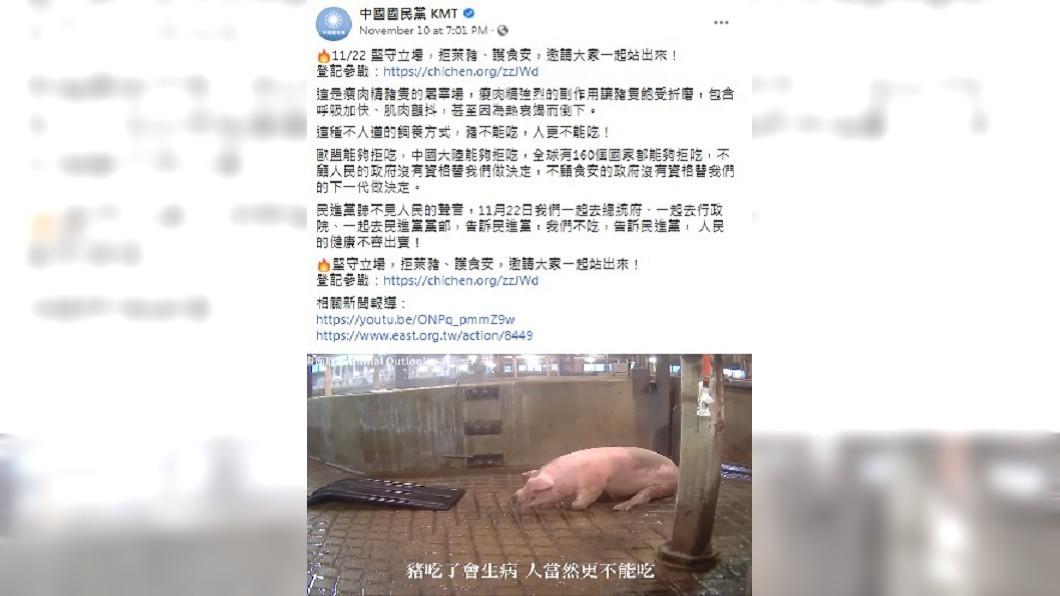 (圖/翻攝自國民黨臉書) 美動保團體已告知豬隻影片與萊劑無關 藍:自行求證