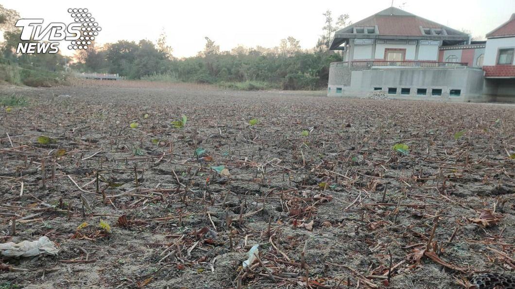 全島金門全島內13座湖庫目前蓄水量僅總量一半,水情告急情況相當嚴峻。(圖/中央社) 金門水情吃緊 籲民眾共同抗旱省水