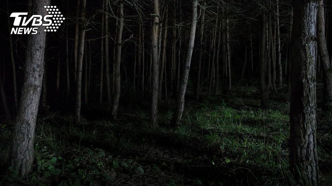 一名女童被棄屍森林,肺臟竟遭人取走。(示意圖/shutterstock 達志影像) 膝下無子誤信黑魔法 男暗林裡「殘殺女童取肺」