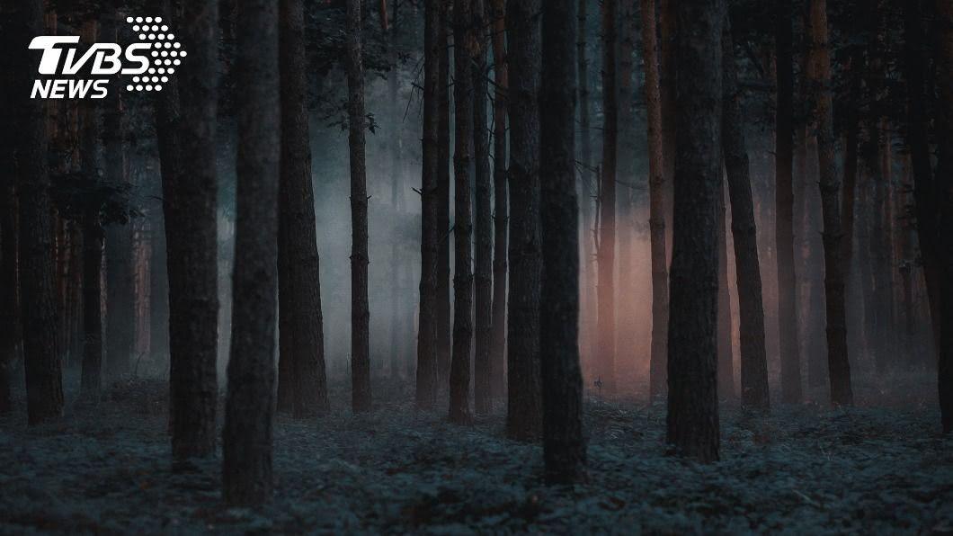 (示意圖/Shutterstock達志影像) 13歲男唱K遭「5友痛毆2hr」 曝屍山頭遺體爬滿蛆
