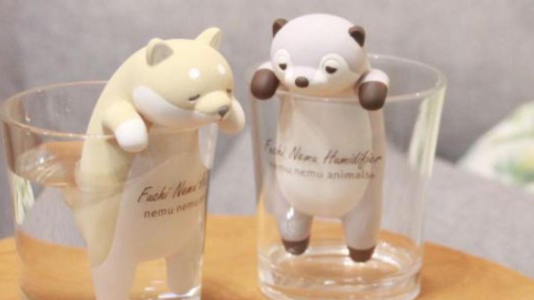 圖/翻攝自r.o.u_official instagram 不只賣萌! 日本柴犬造型加濕器增濕效果佳