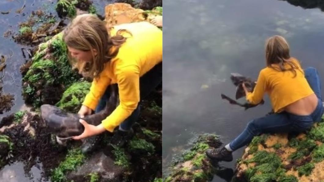 (圖/翻攝自Abby Gilbert臉書) 鯊魚困石縫!11歲女童徒手抱起神救援 母感動喊驕傲