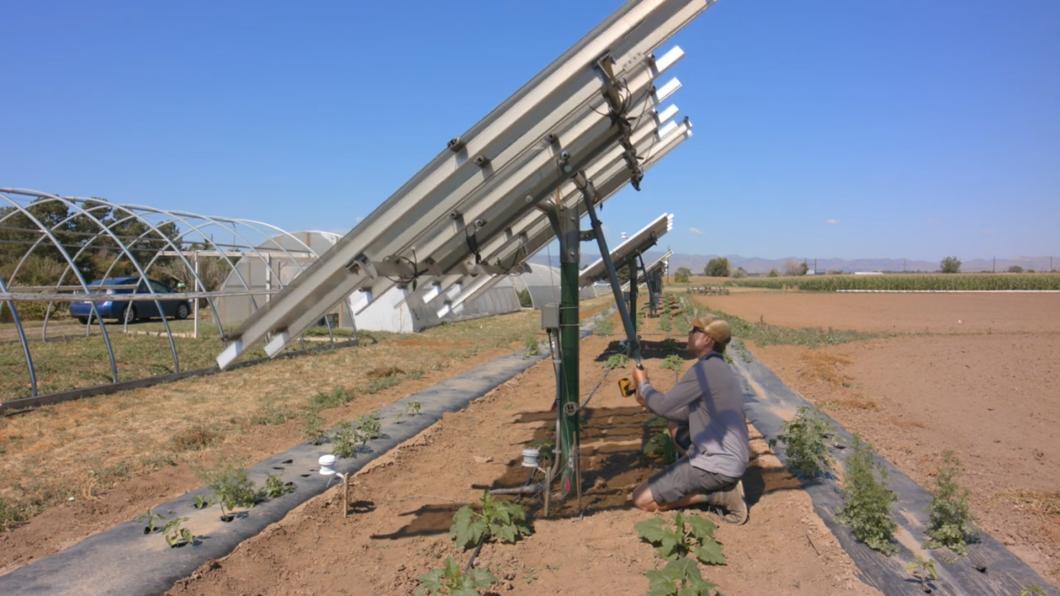 上面種電.下面種田 太陽能發電兼顧農業