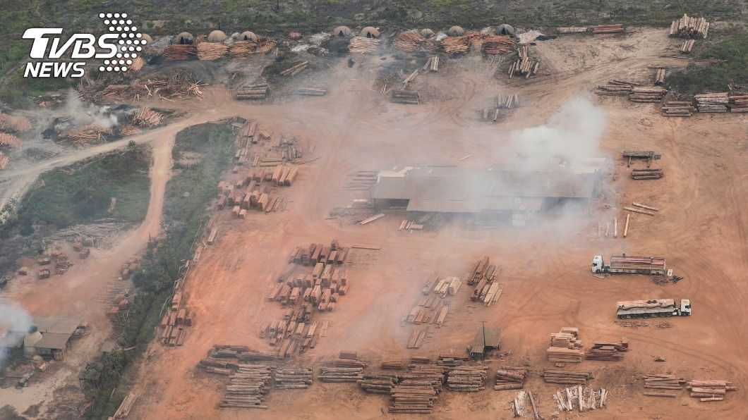 巴西亞馬遜森林砍伐猖獗。(圖/達志影像路透社) 12年來最嚴重 巴西亞馬遜森林砍伐更趨猖獗