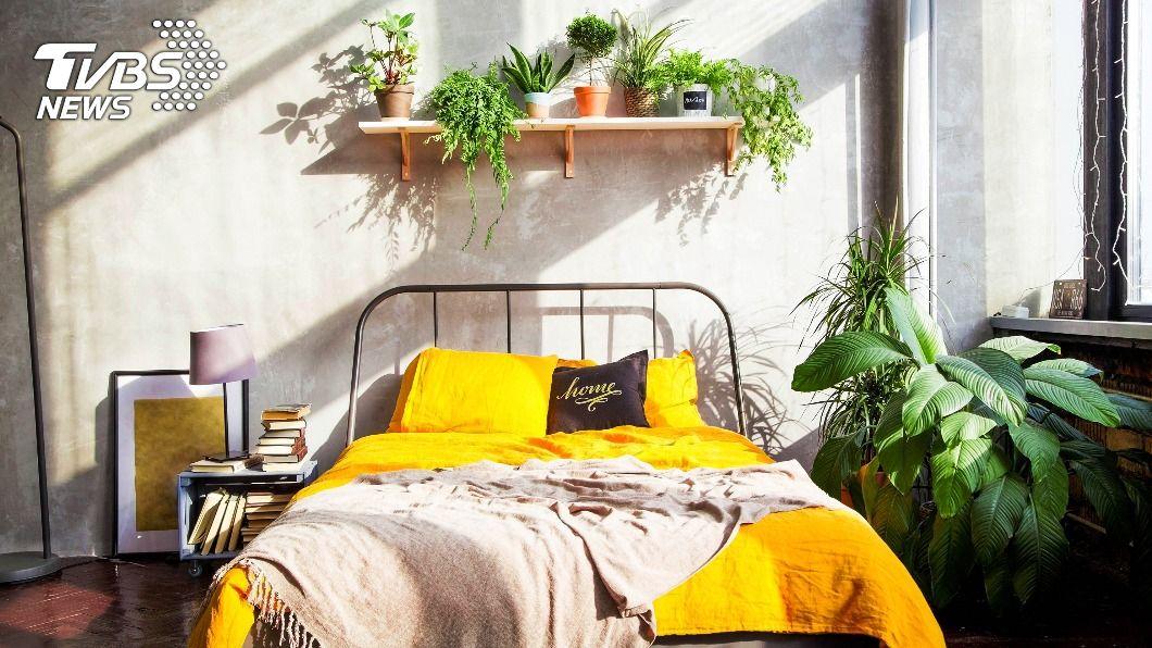空間配色影響房間感官溫度。(示意圖/shutterstock達志影像) 寒冬室內比戶外還冷?「色調」選對讓住家冬暖夏凉