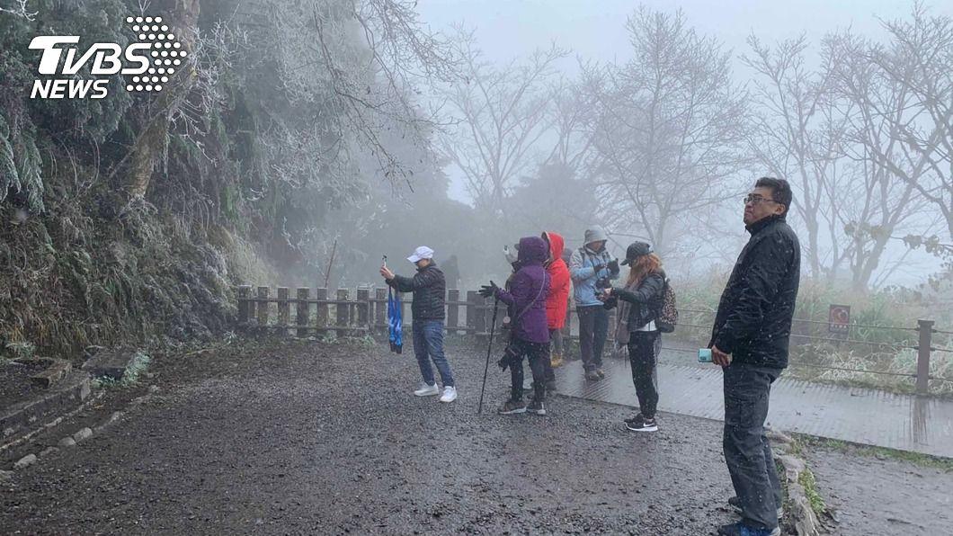 太平山飄下冰霰。(圖/中央社) 太平山見晴步道飄冰霰 水氣若充足有機會下雪