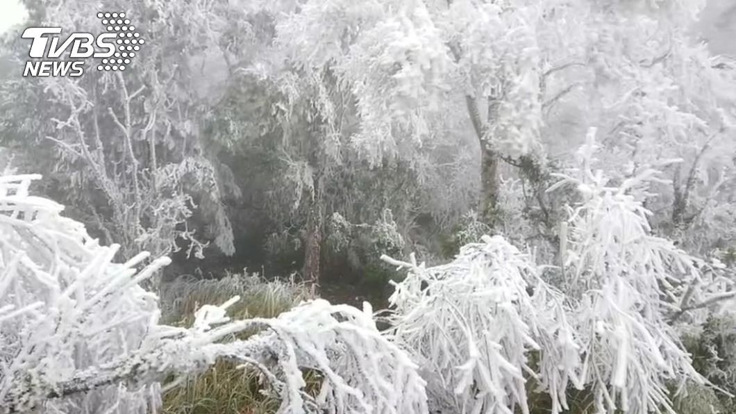 圖/TVBS 快訊/2021第一場雪 太平山山毛櫸步道飄雪