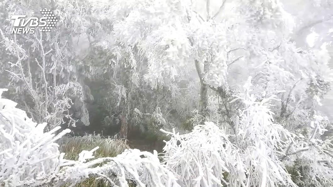 7縣市有望降雪。(圖/TVBS資料畫面) 賞雪團出發!氣象專家「降雪預報」:7縣市機率高