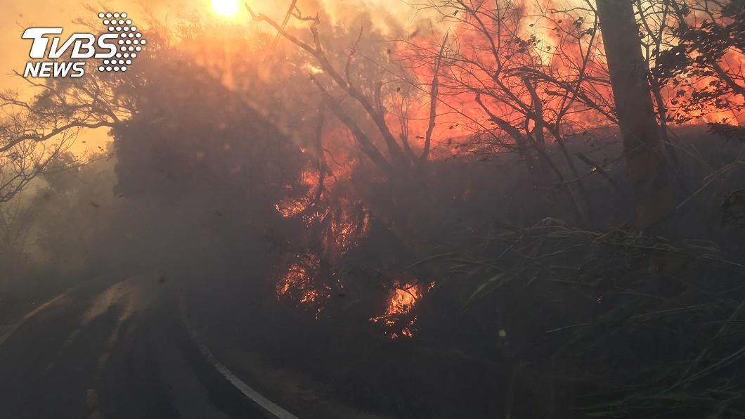白沙屯地區發生火燒山。(圖/中央社) 苗栗火燒山狂噬2公頃 消防「阻蔓延」守民宅戒備