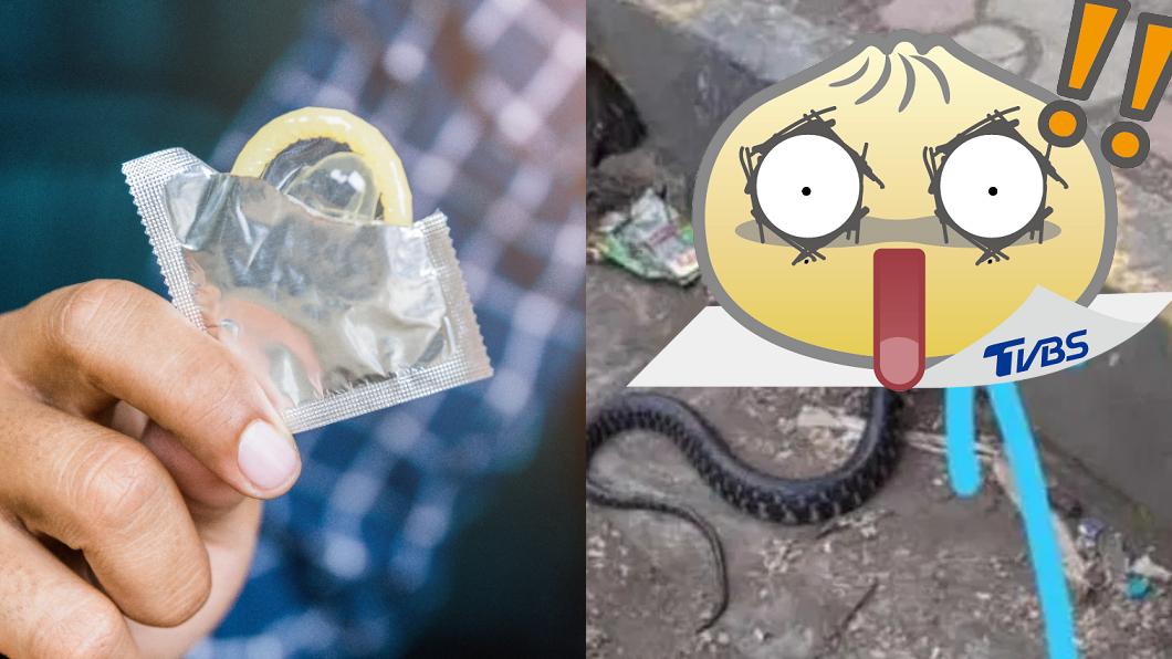 蛇頭慘被罩保險套。(圖/shutterstock達志影像、印媒mpc news) 「用過保險套」罩蛇頭!無辜慘扭路邊掙扎難呼吸