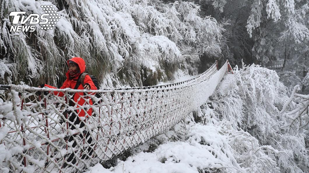 太平山仍不斷下雪。(圖/中央社) 太平山積雪「逾10公分」 明中午12點後禁止入園