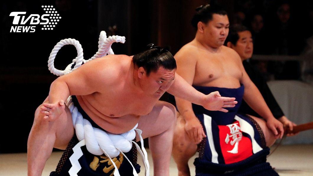 結果 今日 大相撲