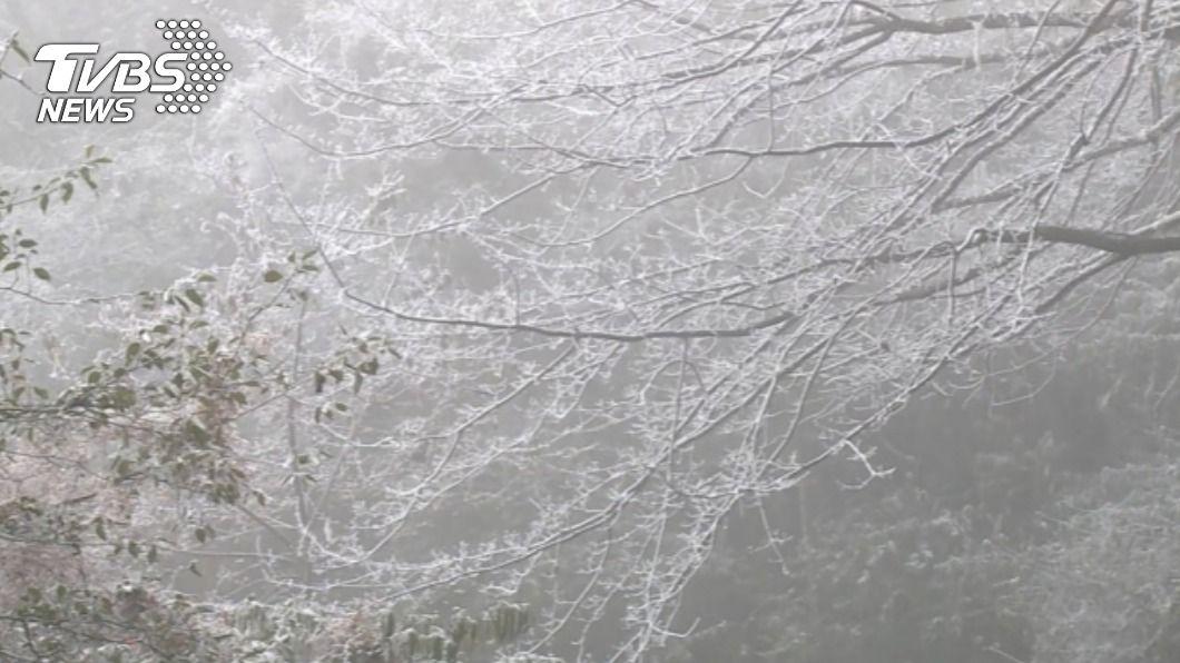 受寒流影響高山結冰。(圖/中央社) 寒流侵襲高山結冰 中橫3路段限掛雪鏈通行