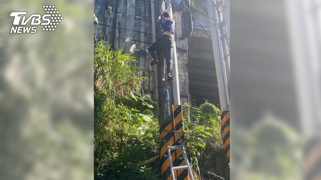 (圖/中央社) 不滿住家常跳電 新北7旬老翁爬上電線桿抗議