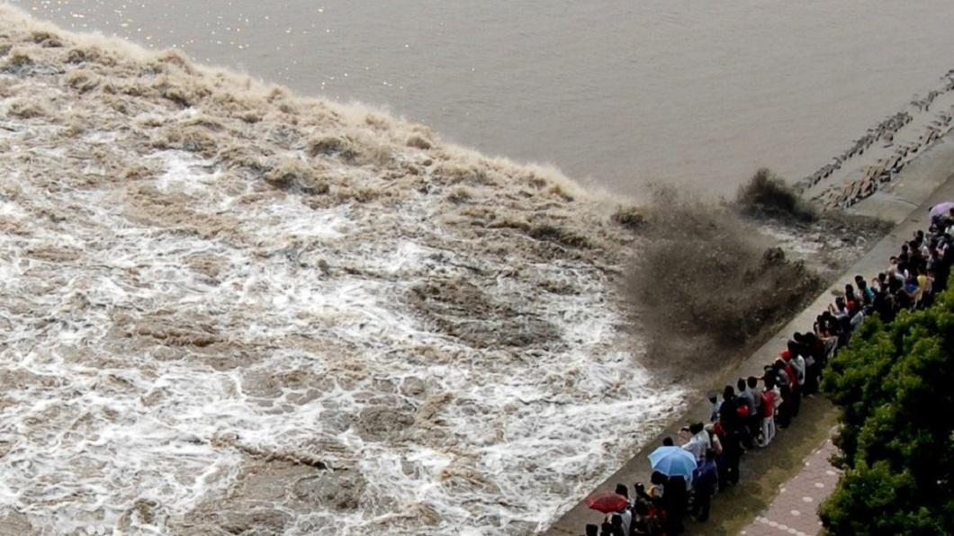 每回錢塘江大潮時,總是會吸引許多民眾前往觀看。(圖/翻攝自百度百科) 陸女被江水捲走亡 父母向公司討賠償「要給兒買房」