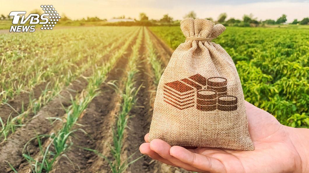 日本農產品出口比前年增加11.7%,為6565億日圓。(示意圖/shutterstock達志影像) 日本食品出口額創新高 香港居冠、台灣第4名