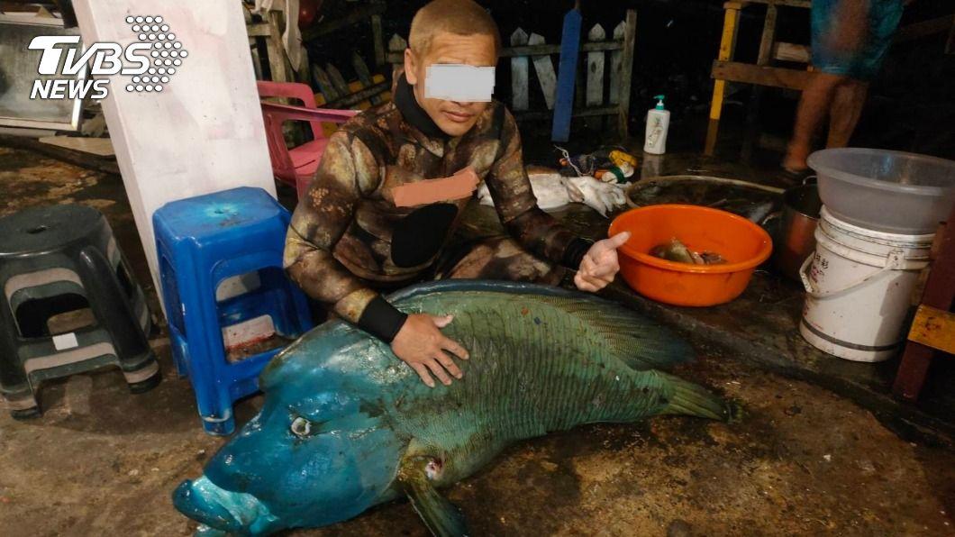 蘭嶼不肖人士非法獵捕龍王鯛,還比讚合影炫耀。(圖/TVBS) 蘭嶼僅剩4隻!保育龍王鯛再遭殺 男比讚合影炫耀