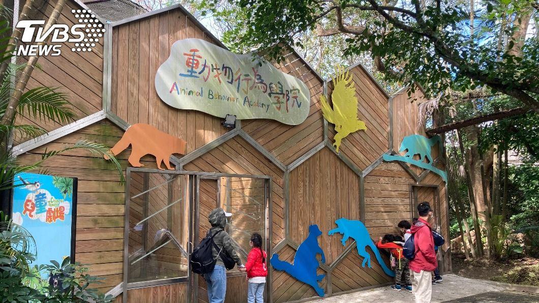 北市動物園推出動物行為學院。(圖/中央社) 羊駝、鸚鵡當老師 北市動物園示範新型態動物展演